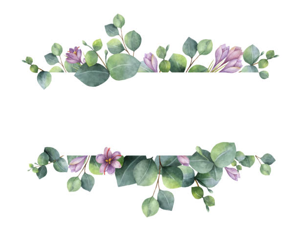 watercolor vector wreath with green eucalyptus leaves, purple flowers and branches. - flowers stock illustrations, clip art, cartoons, & icons