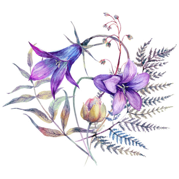 Watercolor Wildflowers Bouquet in Vintage Style vector art illustration
