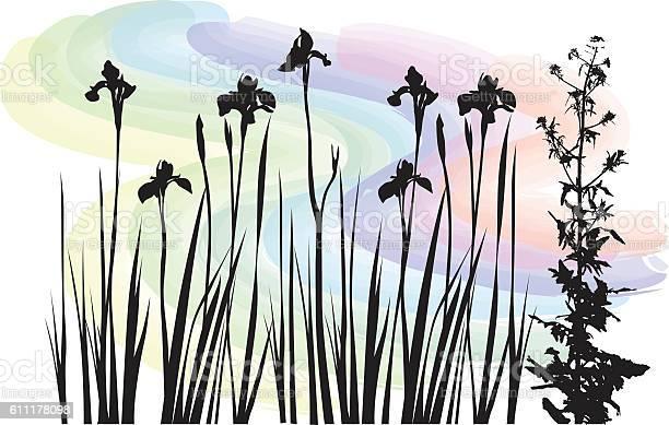 Watercolor wildflowers vector id611178098?b=1&k=6&m=611178098&s=612x612&h=cb6qxekbznkaokpcmfzqzi9hh5srt7rzdmewgqhwwlq=