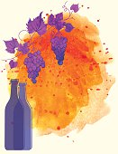 Watercolor Wine Poster. Features trendy watercolor wine splash, grapes, bottle and wineglass. There is a grapevine at the top. Lots of room for text.