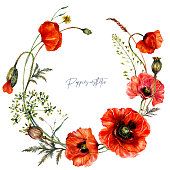 Watercolor Wreath made of Red Poppy Flowers, Buds, Leaves, Meadow Plants. Botanical Illustration of Red Wildflowers Bouquet in Vintage Style. Beautiful Floral Decoration Isolated on White Background.