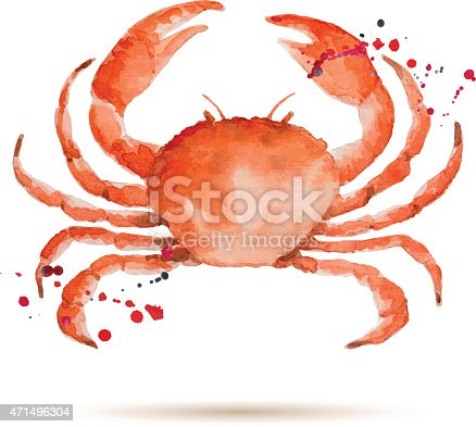 Watercolor crab. Fresh organic seafood. Vector illustration.