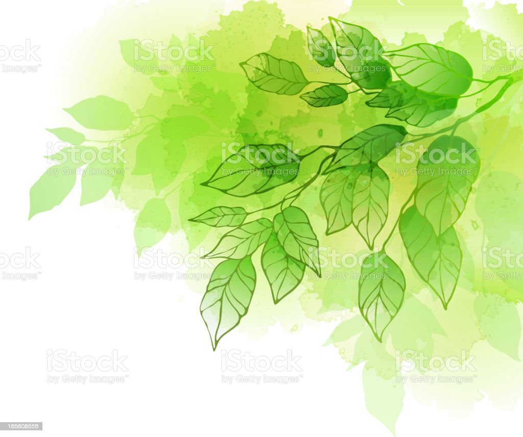 watercolour tree branch - Royalty-free Backgrounds stock vector