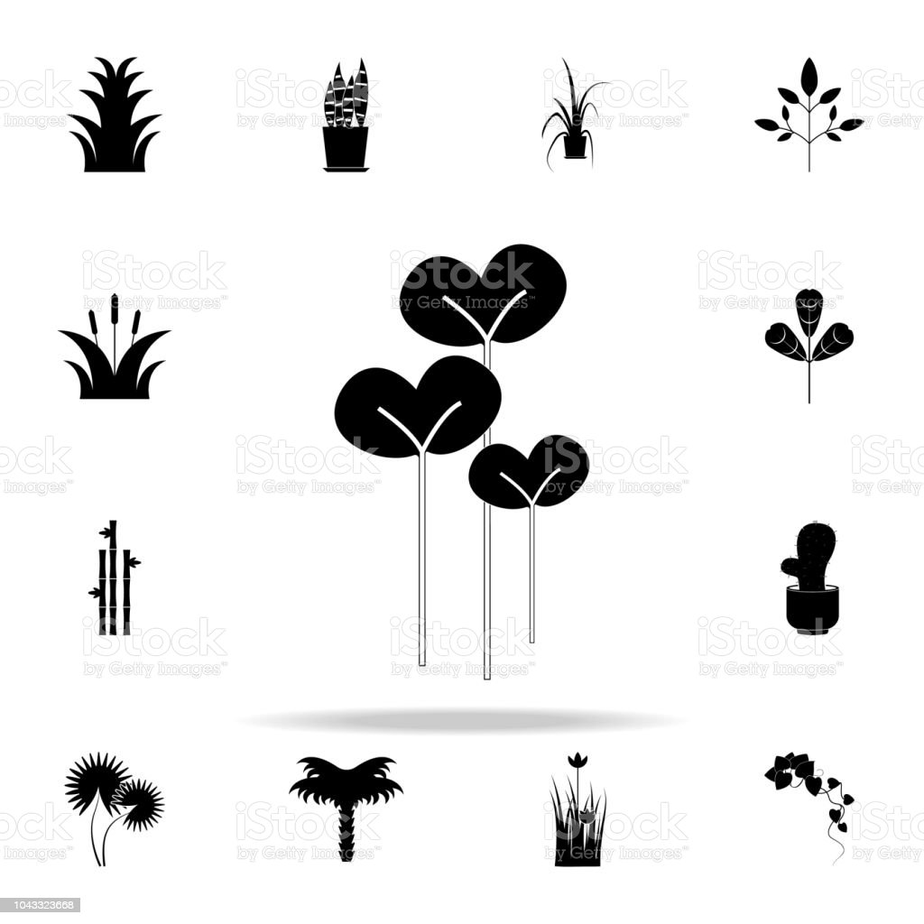 watercress salad icon. Plants icons universal set for web and mobile vector art illustration