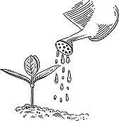 Line drawing of Watering. Elements are grouped.contains eps10 and high resolution jpeg.