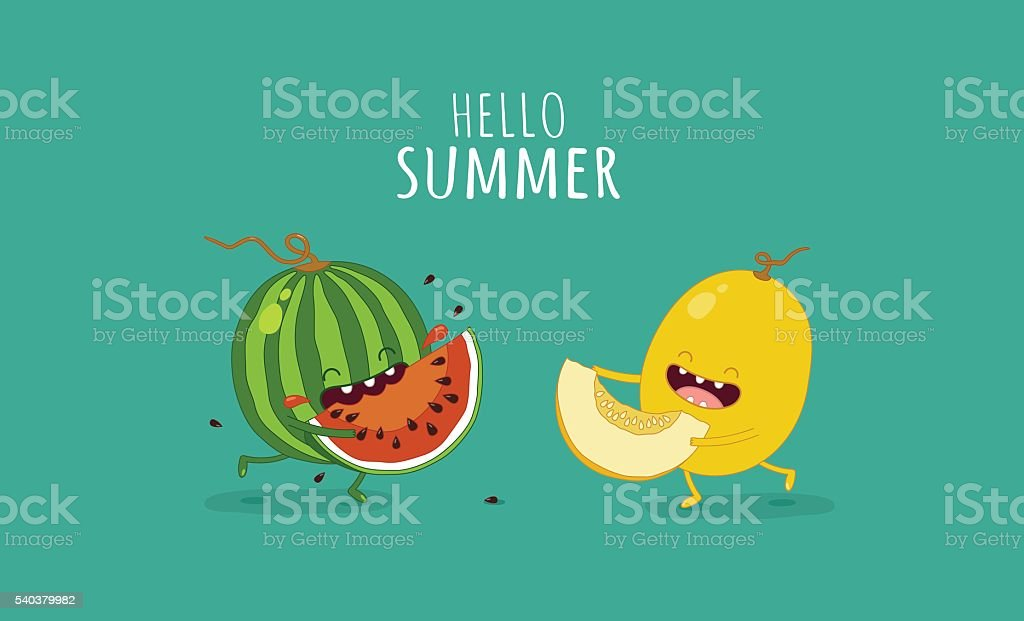 watermelon and melon vector art illustration