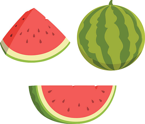 Watermelon Cartoon Vector cartoon of watermelons fruit clipart stock illustrations