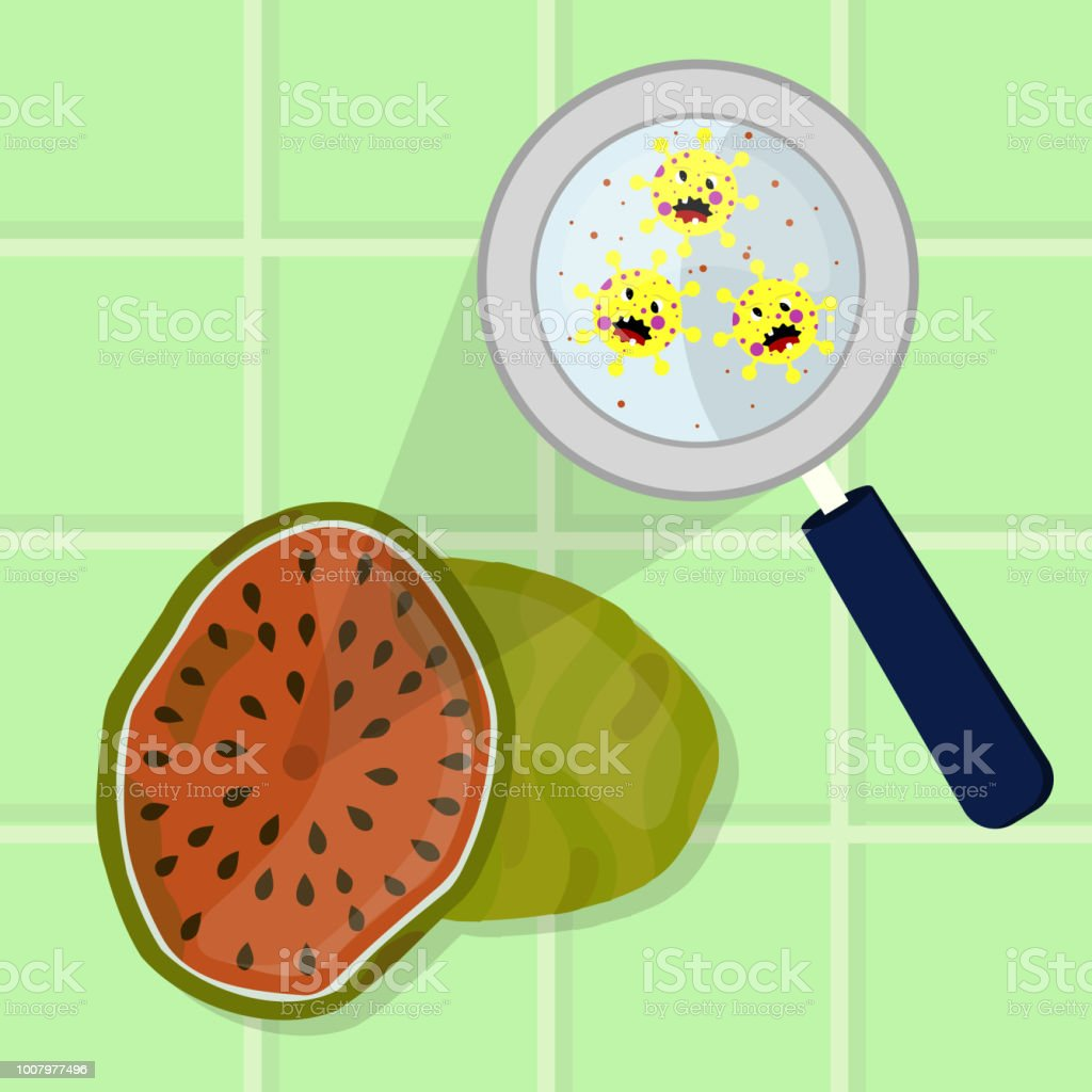 Watermelon contaminated with microbes vector art illustration