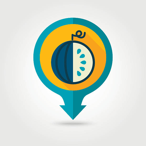 Watermelon flat pin map icon. Fruit vector art illustration
