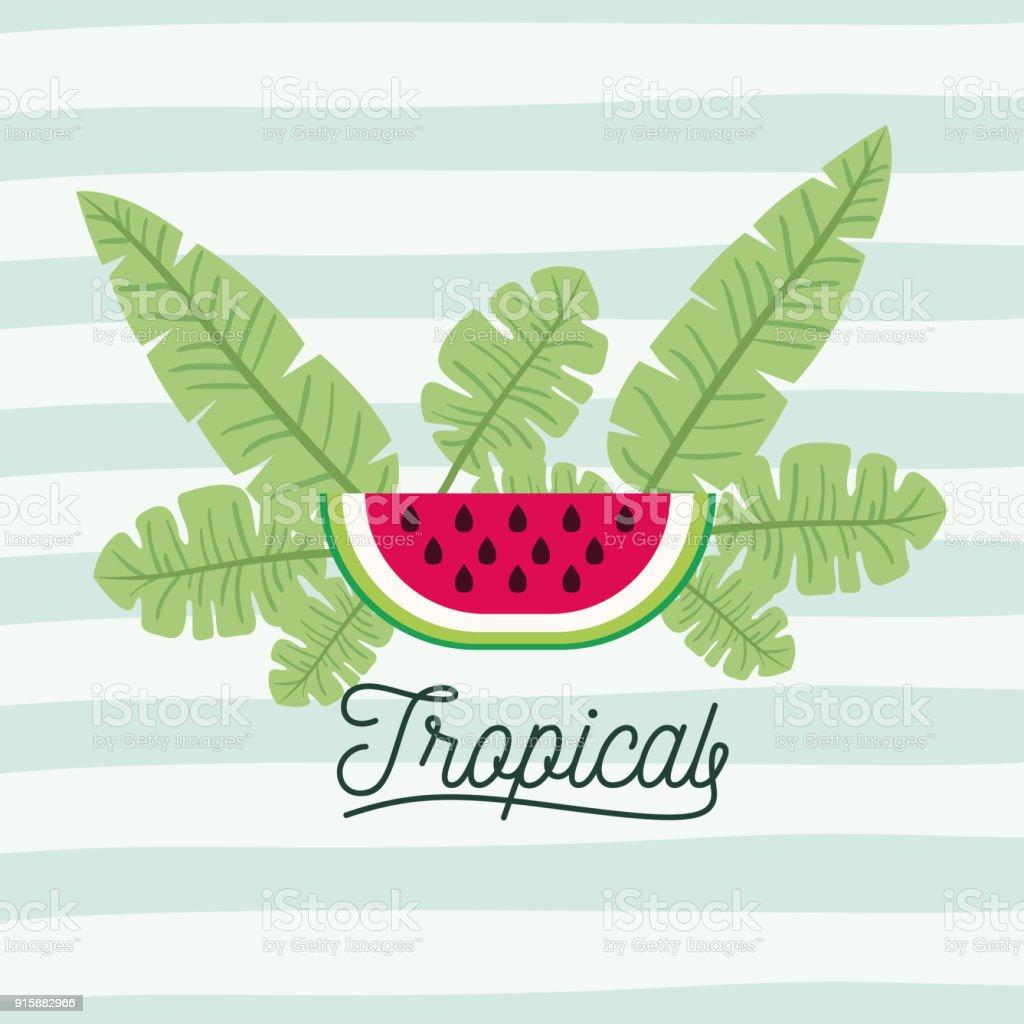Wassermelone Früchte Mit Blättern Auf Dekorative Linien Farbe ...