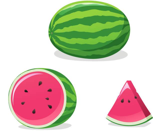 Wassermelonen-set – Vektorgrafik