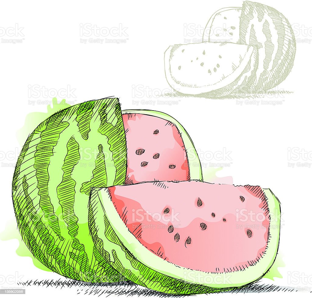 Watermelon royalty-free watermelon stock vector art & more images of cross hatching