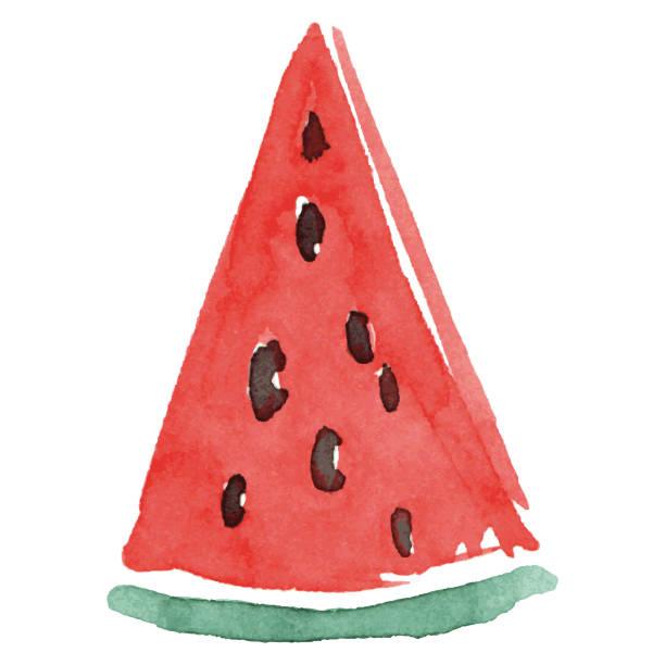 Watermelon watercolor illustration vector art illustration