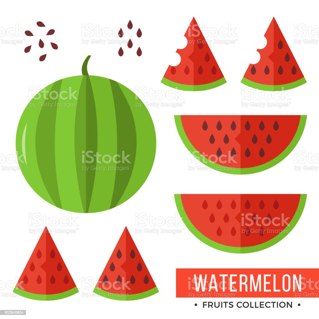 Watermelon. Whole watermelon and parts, slices, seeds. Set of fruits. Flat design graphic elements. Vector illustration - illustrazione arte vettoriale