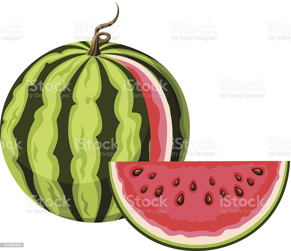 Watermelon with a slice. Vector illustration. vector art illustration