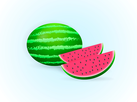 Watermelon with sliced watermelon. Vector illustration.