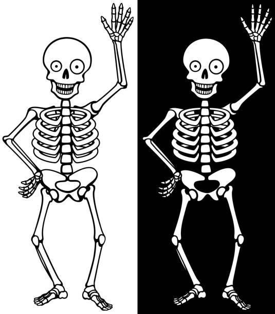 Best Funny Skeleton Illustrations, Royalty-Free Vector ...
