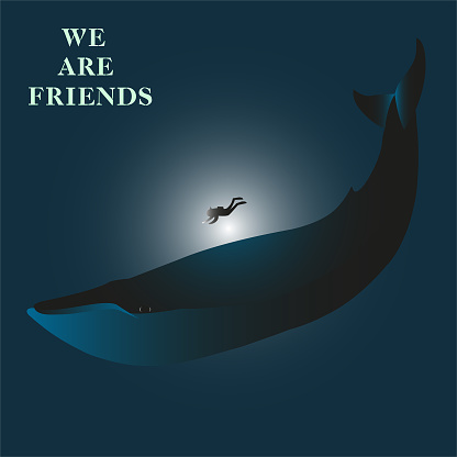 we are friends - modern lettering. Friendship between human and blue whale. let's live in peace.