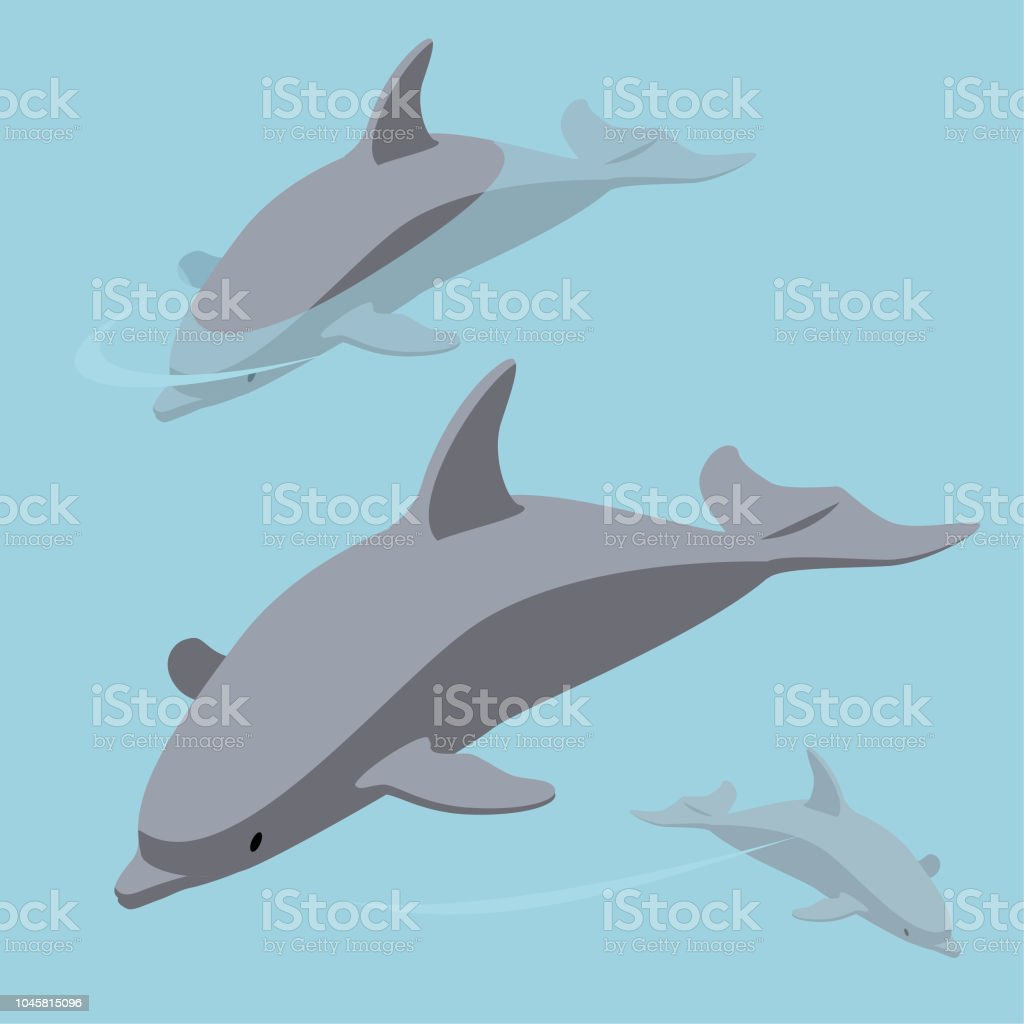 We can be dolphins vector art illustration