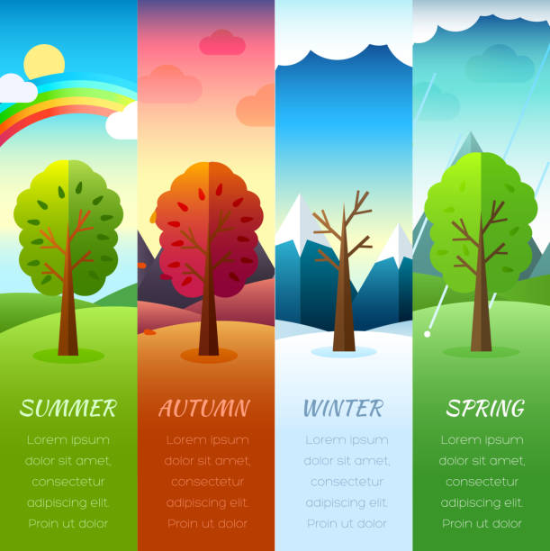 Weather year  information pages set Weather year  information pages set. Seasons template banners. Infographic concept background. Layout illustrations template pages with typography text urban gardening stock illustrations