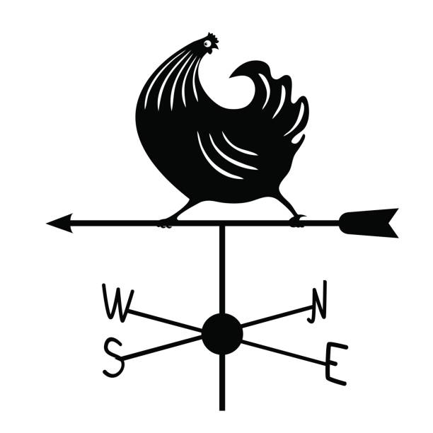 Weathervane - Black running rooster1. Weathervane - Black running rooster3.   Isolated on white background weather vane stock illustrations