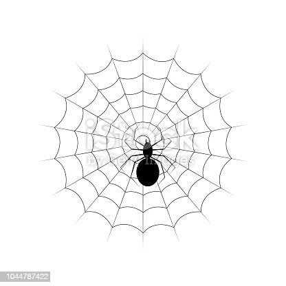 Web and black poisonous spider. Isolated on white vector illustration. Halloween Image