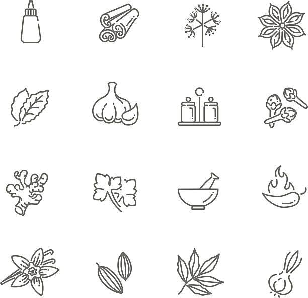 웹 아이콘 세트-스파이시즈, 꽁디망, 허브 - 바닐라 양념류 stock illustrations