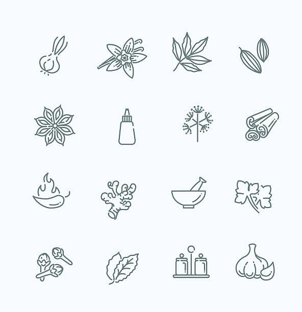 ikony www zestaw-przyprawy, przyprawy i zioła - liść mięty przyprawa stock illustrations