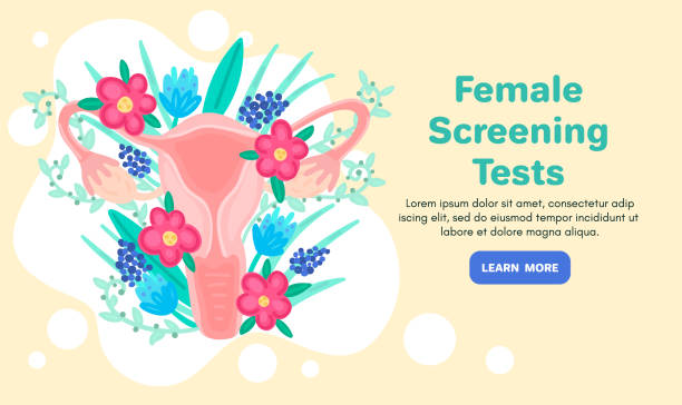 Web template with female reproductive system in flowers. Landing page. Woman health Web template with female reproductive system in flowers. Landing page. Woman health. Advertising for women's pads, lactobacillus, department of obstetrics and gynecology. Medical banner. Vector, eps10 gynecology stock illustrations