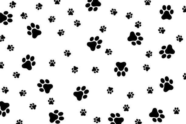 stockillustraties, clipart, cartoons en iconen met web - zoogdieren met klauwen