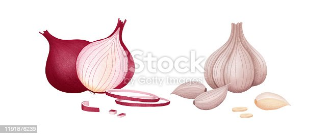 Red onion of cut and whole. Fresh organic garlic and onion isolated on white background. Vector illustration