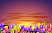 colorful tulips with a sunrise background