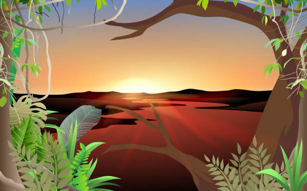 Web landscape of jungle at the river in the morning moss stock illustrations