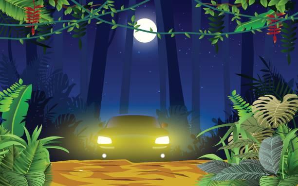 stockillustraties, clipart, cartoons en iconen met web - mist donker auto