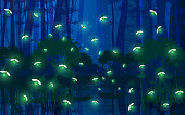 fireflies at the mangrove forest in the night
