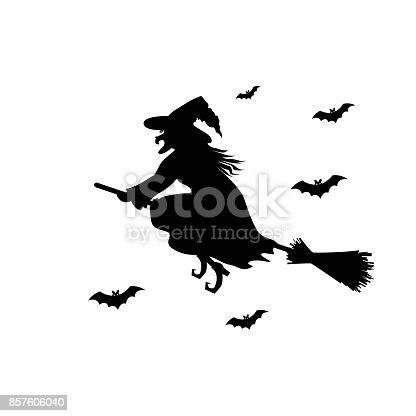 Witch  black   silhouette on  broomstick isolated on white background. Vector illustration.