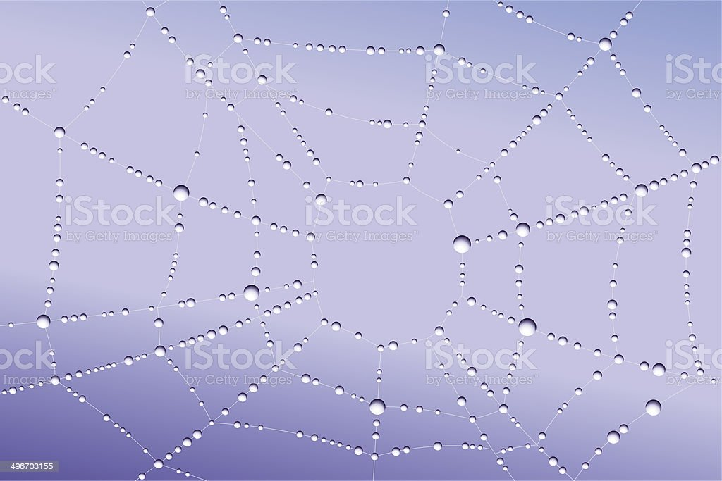 Web with droplets vector art illustration