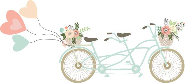 hochzeits-fahrrad mit luftballons. blumenkorb. liebe ballons.twin bike - lustige fahrrad stock-grafiken, -clipart, -cartoons und -symbole