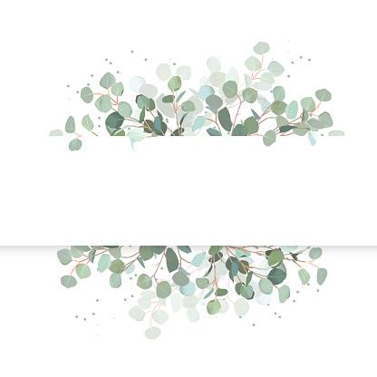 Wedding eucalyptus horizontal vector design banner.