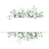 Wedding eucalyptus horizontal vector design banner.