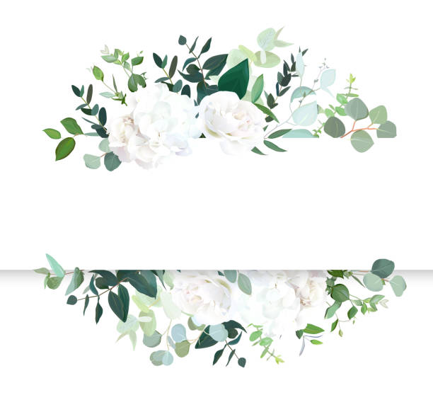 illustrazioni stock, clip art, cartoni animati e icone di tendenza di wedding floral horizontal vector design banner. - matrimonio