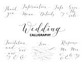 Wedding hand written custom calligraphy set  isolated on white. Save the date, love, information, response, details, thank you, menu words. Great for wedding invitations, cards, photo overlays.