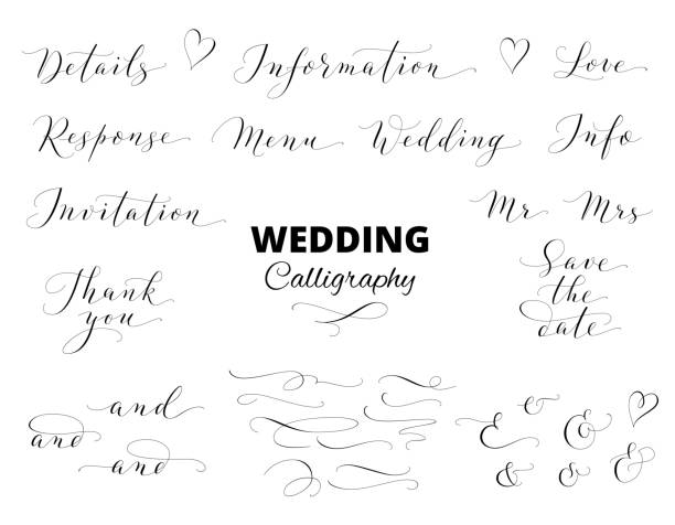 Wedding hand written calligraphy set isolated on white. Great for wedding invitations, cards, banners, photo overlays. vector art illustration