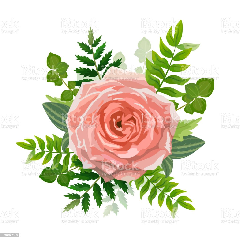 Wedding invitation card. Lovely template. Card design with rose flower, forest greenery ferns, plants, green leaves. royalty-free wedding invitation card lovely template card design with rose flower forest greenery ferns plants green leaves stock vector art & more images of autumn