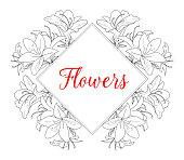 Azalea, White Background, Rhododendron, Flower, Flowerbed