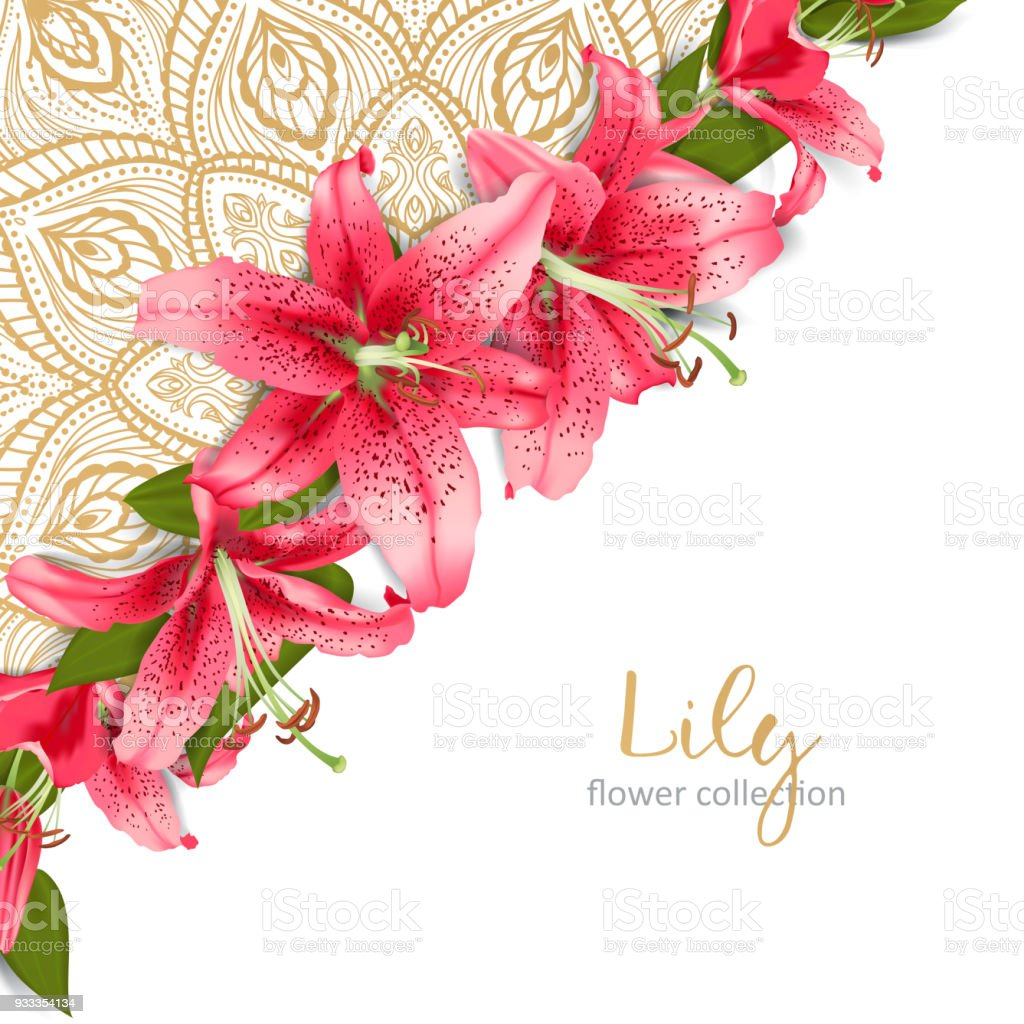Wedding Invitation With Lily Flowers Stock Vector Art & More Images ...