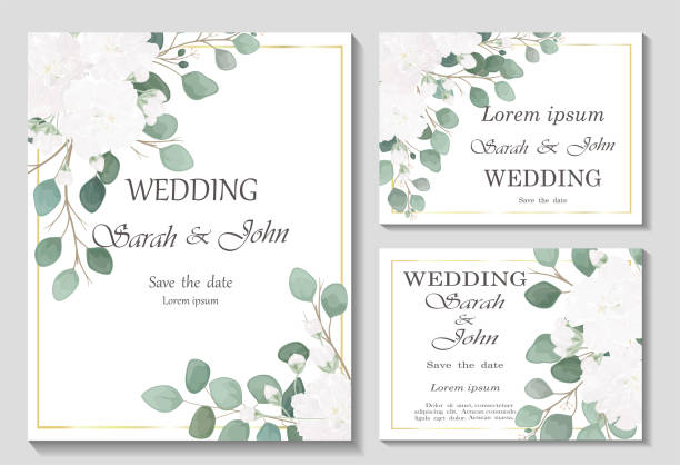 Wedding invitation with rose flowers and leaves isolated on white. Wedding invitation with rose flowers and leaves isolated on white. Vector Watercolour. wedding invitation stock illustrations