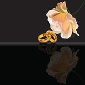 Wedding rings and white rose on black background with reflection. Files include: Illustrator CS5, Illustrator 8.0 eps, SVG 1.1, pdf 1.5, JPEG 300 dpi, organized by layers, easy to edit.
