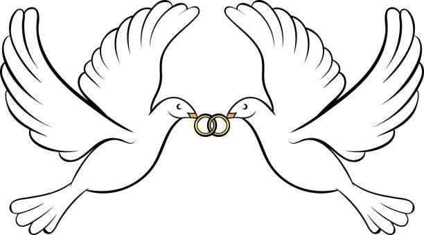 Hochzeitstauben Vektorgrafiken Und Illustrationen Istock