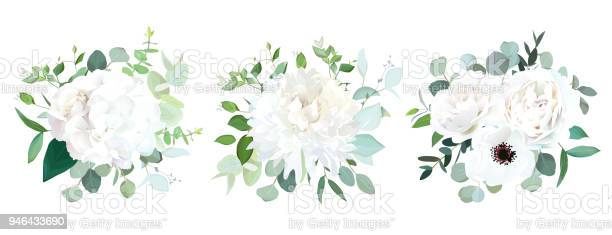 Wedding white flowers vector design bouquets vector id946433690?b=1&k=6&m=946433690&s=612x612&h=0yea33xgfb2oabrhygz9owure1rxkmng1ntazy6iqwa=